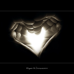 A Heart in Hand (Ziyan | Photography) Tags: light blackandwhite bw white black canon 50mm hand heart 5d usm ef      f12l