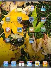 iPad home screen (swanksalot) Tags: chicago apple doorcounty iphone homescreen ipad swanksalot sethanderson
