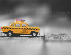 ~ Yellow Cab ~ (ADAM TAYLOR   Photography) Tags: city newyorkcity newyork color colour cars colors car yellow america canon photography eos 50mm photo model colours dof photos cab taxi models cities taxis depthoffield photograph american mk2 f18 cabs tones tone americas modelcar selective fifty selectivecolour nyctaxi nyctaxis selectivecolouring newyorkcitytaxi newyorktaxi niftyfifty nyccab nyccabs nify 450d newyorktaxis canoneos450d nycyellowtaxi newyorkcityyellowcab nycyellowcabs nycyellowtaxis newyorkcityyellowtaxi newyorkcityyellowtaxis newyorkcityyellowcabs