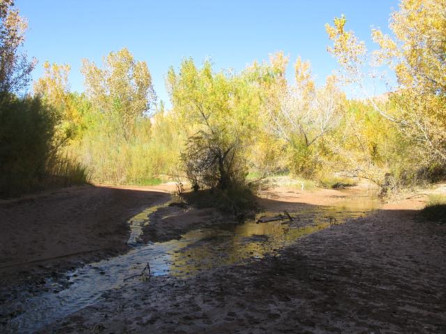 Coyote Gulch離開水流處