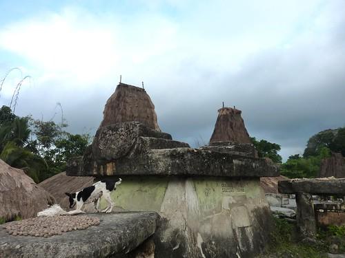 Sumba ouest-Waikabukak-Praiijing-village (23)