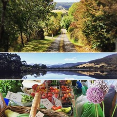 063/365 • three pieces of a beautiful weekend... the top is Walpole Lane, and the bottom is this morning's market, both in Franklin. The middle shot was an hour ago as we made our way up the river to Huonville... • . #weekend #market #lane #huonville #huo
