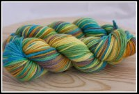 'Along Came a Grasshopper...' on Inspire BFL aran