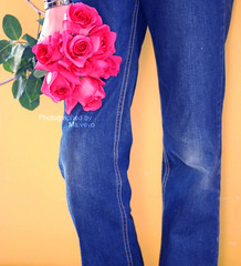 Avoid being impatient... Remember time brings roses (v3vo-- away.) Tags: birthday pink roses orange 3 happy nikon d jeans notme fatma d80 nikond80 101109 msvevo my100thshot