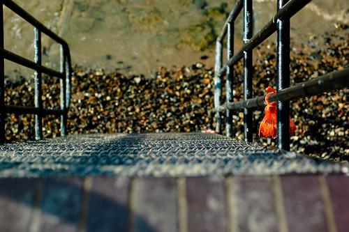 Thames Steps