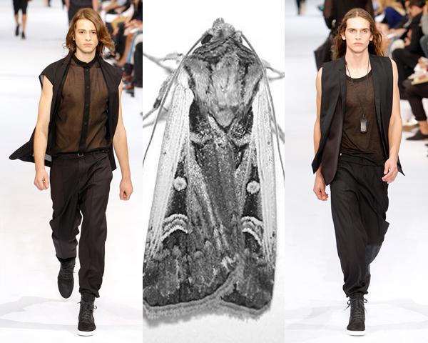 Dior Homme 06