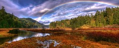 Rainbow Panorama (Brandon Godfrey) Tags: world pictures park autumn trees light sky canada color colour detail reflection fall nature water colors beautiful rain clouds forest reflections landscape outdoors photography highlands rainbow rainforest scenery colorful colours bc forrest photos pics earth britishcolumbia pano sony details great scenic scene victoria panoramic canadian goldstream vancouverisland swamp western pacificnorthwest northamerica marsh colourful alpha dslr raining bog hdr highdynamicrange cloudscape selective malahat photomatix tonemapped tonemapping colorphotoaward thechallengegame challengegamewinner sonya300