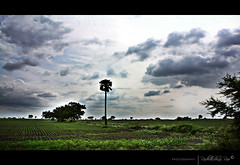 O N E (Rk Rao) Tags: fab history dedication canon landscape photography perfect photographer treasure artistic awesome tagged textured masterpiece intresting intrestingness supershot anawesomeshot morningcanon thepowerofnow magicunicornmasterpiece