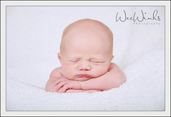 So sweet. (weewinksphotography) Tags: pose basket florida newborn prop babyboy 3weeks weewinks