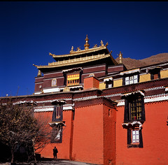 (((((JP))))) Tags: 120 6x6 tlr rolleiflex zeiss fuji tibet planar 西藏 80mm rvp100 喇嘛 正片 28e 日喀則 扎什倫布寺 中判 麗來 tibetselect