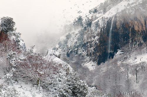 La cascada nevada