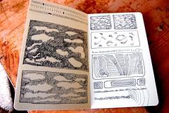 sketch-book drawings