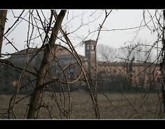Cascina... (Andrea Amaducci) Tags: natura campagna latte bestie cremona mucche cascina agricoltura soncino justnature vitigno bessci