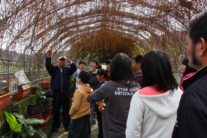 三芝番婆林花園(花卉、醬菜)0029