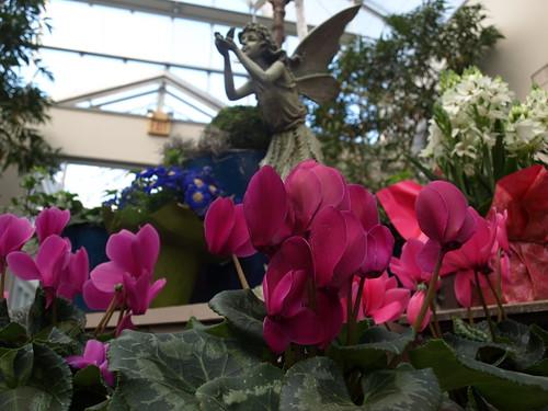 flowershop 045