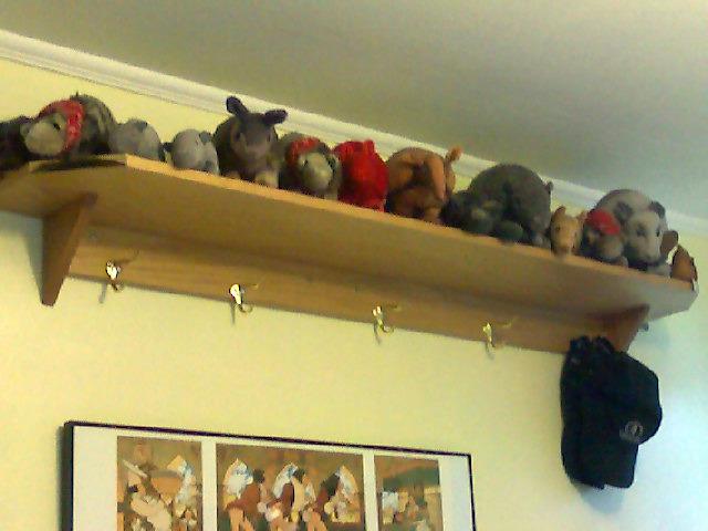 Bedroom armadillo shelf