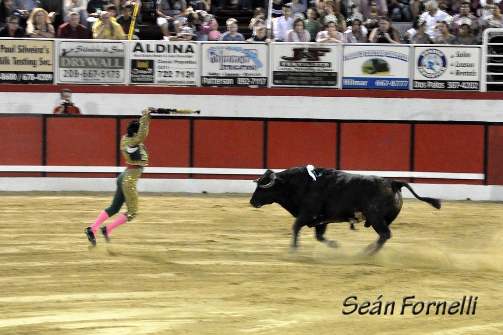 Modesto Festa Bullfights 2011 - 144