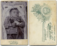 Boy With Flowers (josefnovak33) Tags: old boy vintage de post photograph cdv visite carte postmortem mortem