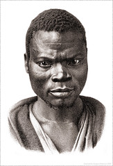 1870's Portrait of an African Man (newmexico51) Tags: africa old man illustration goatee african 19thcentury hombre barba homme nineteenthcentury lithograph 1870s