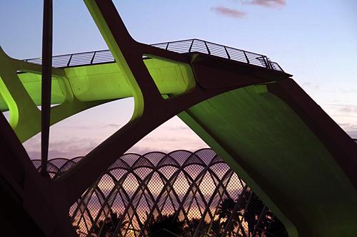 Calatrava-palm