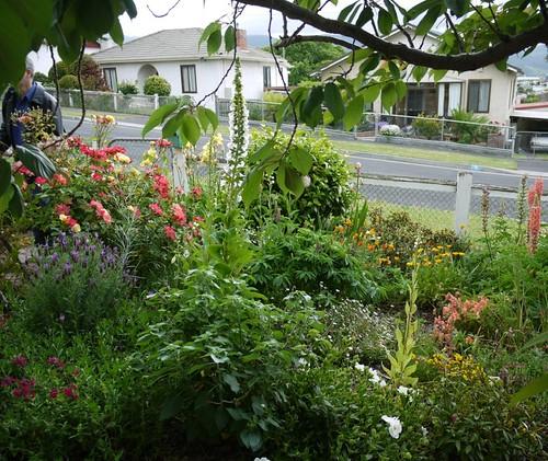 9 of 12: Front Garden
