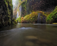 Eagle Creek (Jesse Estes) Tags: fog columbiarivergorge eaglecreek jesseestesphotography