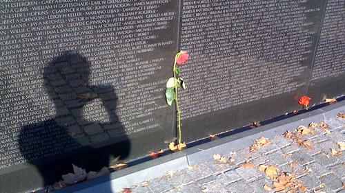 Wilted rose by the Vietnam War Memorial
