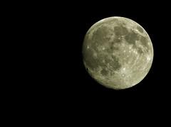 Moon shot (Mr Grimesdale) Tags: moon lunar e510 olmpus mrgrimsdale stevewallace mrgrimesdale