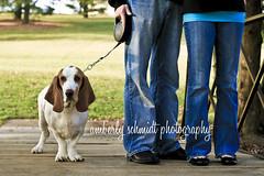 Cooper and Family (Amberly Jo) Tags: dog hound cooper bassethound longears brownandwhitedog