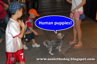 Human puppies 1