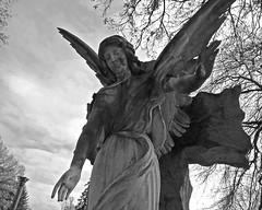 Look Downward Angel (musicmuse_ca) Tags: bw 15fav cemetery statue angel brooklyn greenwoodcemetery newyorknewyork georgeelliot