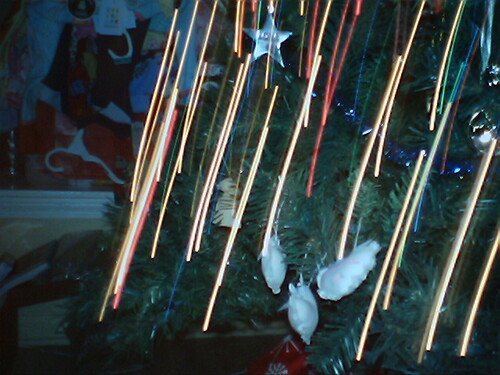 Graeme's Cam:  Falling Stars in the Yule Tree