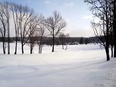 Frozen lake, Northern Pennsylvania (exakta) Tags: trees winter lake snow ice water rural pennsylvania calendarshot