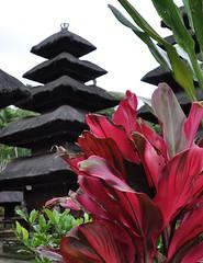 Batukaru (Jambo Jambo) Tags: bali indonesia temple nikon pura tempio batukaru d5000 puraluhurbatukaru earthasia jambojambo