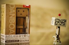 New Addition (denniscortez) Tags: project toy photography robot suzuki 365 dexter revoltech danboard