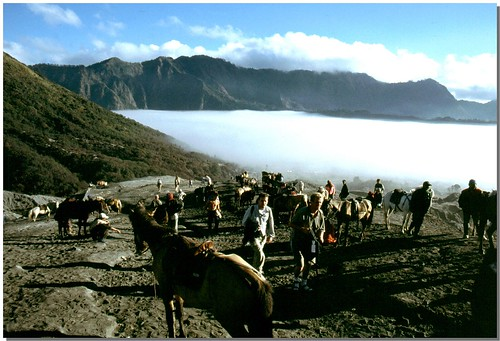 """Bromo [16] • <a style=""""font-size:0.8em;"""" href=""""http://www.flickr.com/photos/49106436@N00/4330410854/"""" target=""""_blank"""">View on Flickr</a>"""