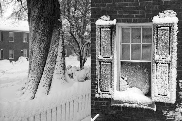 05 Snowpocalypse 2.0