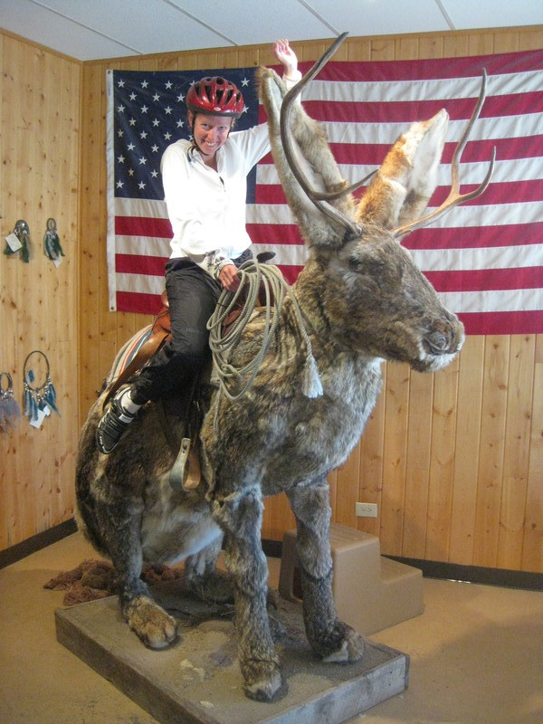 Riding the Jackalope