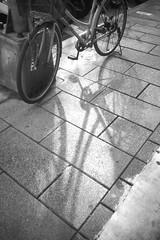 (VisualAge) Tags: street bw monochrome taiwan olympus taipei konica 18mm waiwai m43 micro43 olympusep1