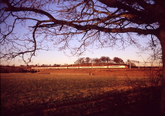 film 31660 26022010 053 (Phil Grain) Tags: trees sunset tree film water train canal fuji framed railway trains frame provia warwickshire shilouette virgintrains passengertrain pendolino 400x westcoastmainline wcml polesworth coventrycanal trentvalley leefilters kodake100vsfilm framedbytree freightlinerintermodal londonmidlandtrains