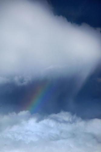 IMG_4136-w cloud