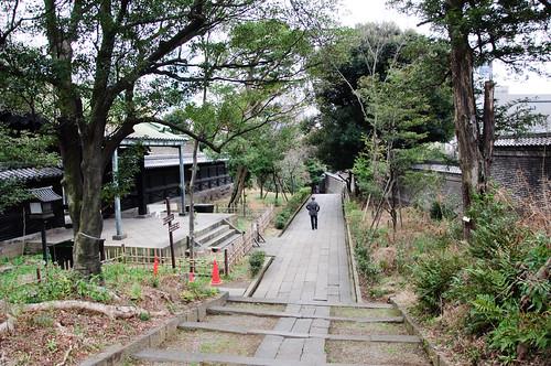 yushima seido grove