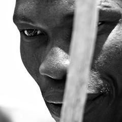 Il vecchio guerriero - old warrior (Stefano Mazzoni) Tags: africa portrait blackandwhite bw holiday animal southafrica nikon bn warrior biancoenero krugernationalpark guerriero d300 fifaworldcup2010 stefanomazzoni nikkor70200mmf28gedvrii