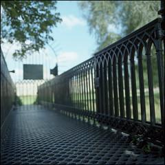 Forbidden Garden (Alvaro's Pix) Tags: uk inglaterra bridge cambridge shadow color 120 6x6 college mediumformat garden dark puerta gate pass jardin kodakportra400vc structure 120film ha