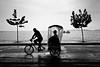 Ecotáxi [Rickshaw] (Jim Skea) Tags: deleteme5 trees deleteme8 brazil people blackandwhite deleteme deleteme2 deleteme3 deleteme4 deleteme6 deleteme7 wet rain brasil riodejaneiro pessoas saveme4 saveme5 saveme6 saveme savedbythedeletemegroup saveme2 saveme3 saveme7 tricycle chuva wideangle saveme10 saveme8 saveme9 rickshaw ultrawide paquetá pretoebranco árvores molhado baíadeguanabara guanabarabay grandeangular sigma1020mmf456exdchsm amendoeiras almondtrees fujifilmfinepixs5pro praiadostamoios ecotáxi