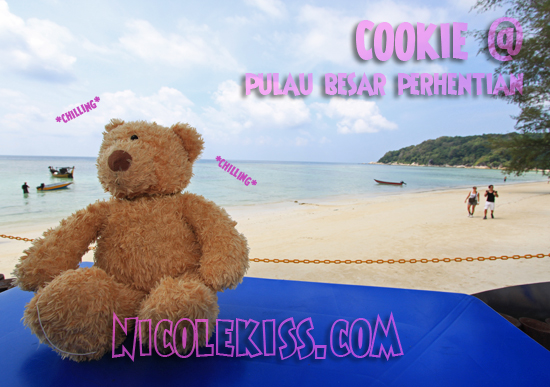 cookie chilling in perhentian