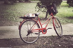 lonesome days and sleepless nights (foldedmemos) Tags: old school red film bike bicycle photoshop canon vintage campus university edited feel taiwan faux parked taipei 1855mm dslr   fujen  500d  project365 fakevintage 365days  rebelt1i