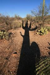 IMG_9665 (simon_travelboy) Tags: arizona tucson saguaronationalpark