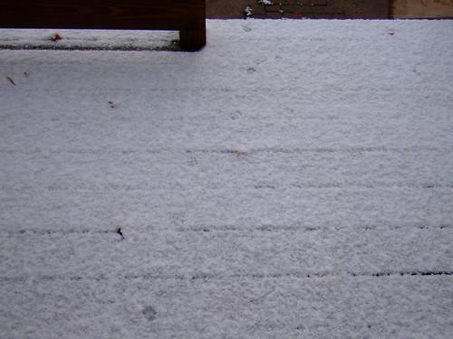 First Snow 013