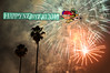 come fly with me to a new beginning (Kris Kros) Tags: new trees money photoshop happy fireworks good year joy happiness palm celebration health kris laughter kkg prosperity 2010 jubilation cs4 kros kriskros kkgallery
